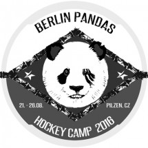 news_hockey_camp_2016